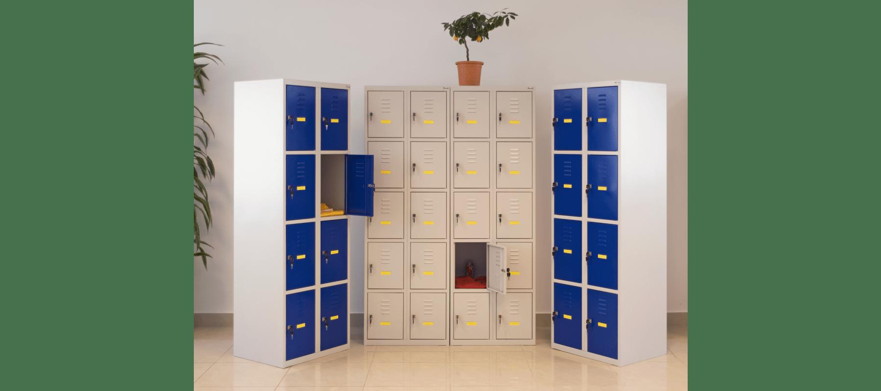 szatnie szafy schowkowe mw aranżacje - 15